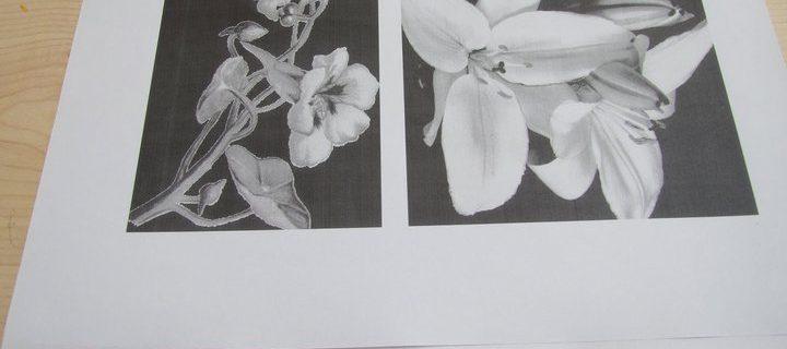 flowerdrawingpower 5 juli 2011 (46)